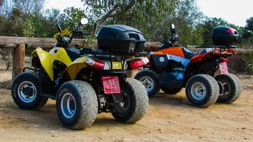 Rent A Buggy - 78125 photos
