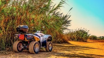 Rent A Buggy - 67356 discounts