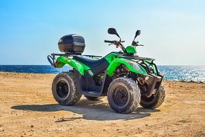 Rent A Buggy - 87000 selection